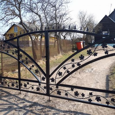 atveriami-vartai-zlatila.lt (12)